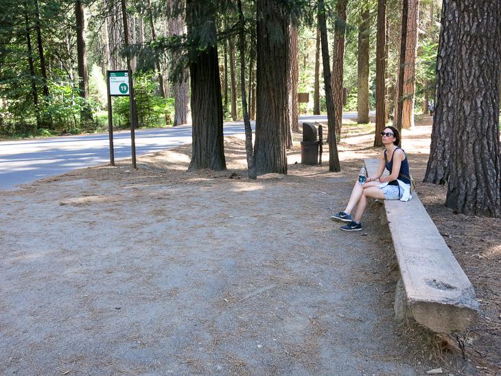 California Travel Yosemite National Park Shuttle