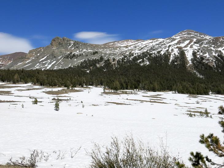 California Travel Yosemite National park