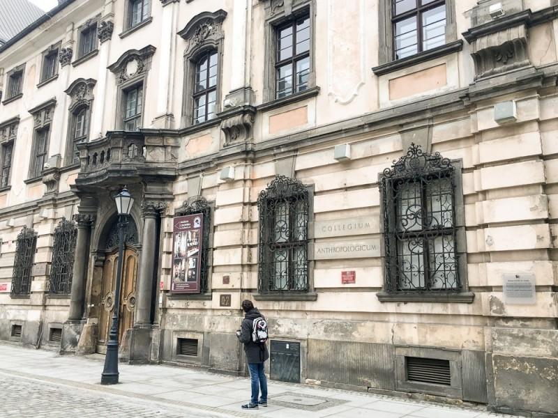 Wroclaw Poland Rynek University