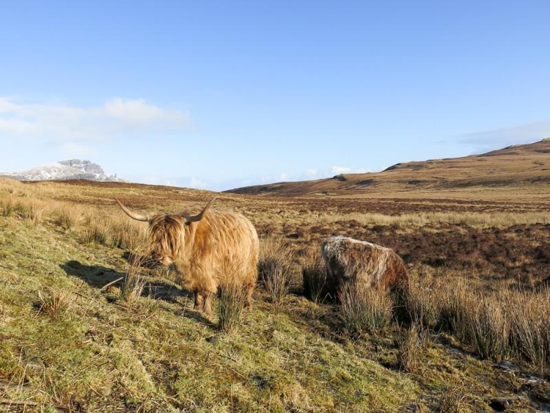 Isle Of Skye Scotland Highland Travel