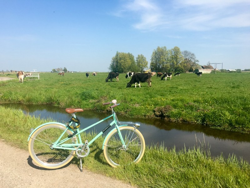 Amsterdam Holland Waterland Netherlands Nederland Veloretti Bicycle Fietsen