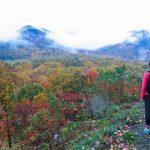 Fall Peak Foliage Indian Summer USA New England Honeymoon Road Trip