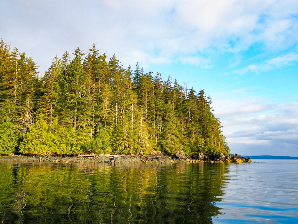 Telegraph Cove Canada Vancouver Island British Columbia Travel