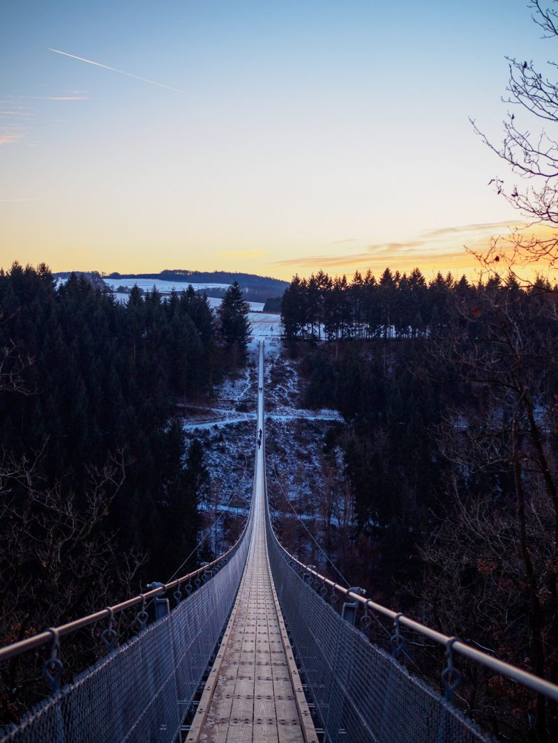 Germany Hochwald Eifel Travel Winter Geierlay Suspension Bridge