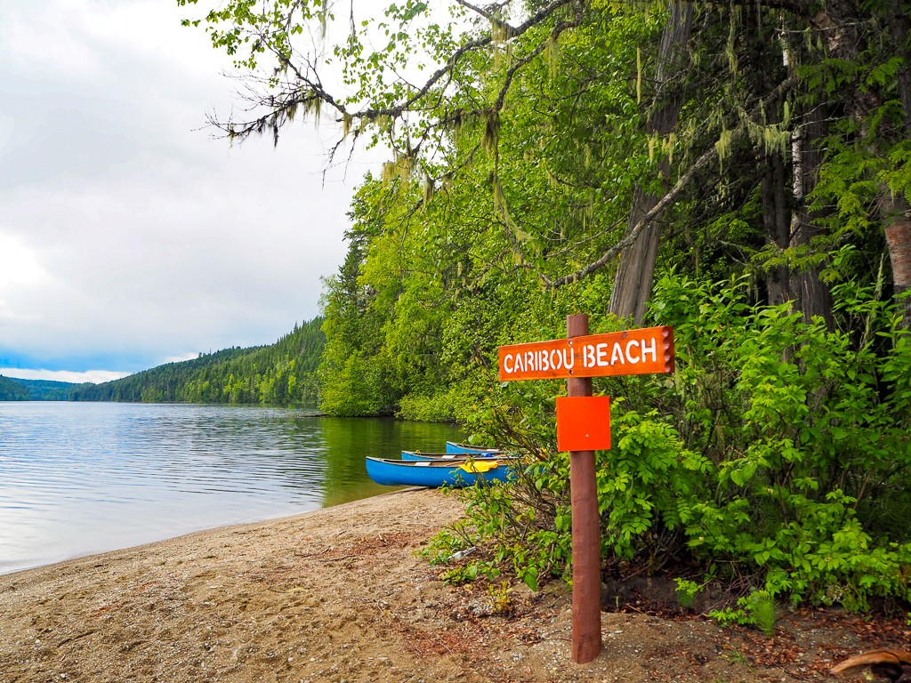 Canada, Wells Gray, British Columbia, Travel, Road Trip, Canoeing