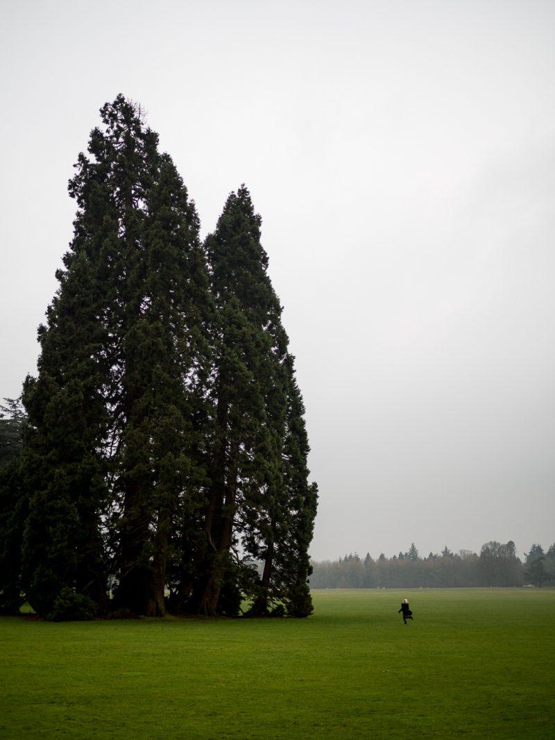 Cotswolds Travel UK Weekend Getaway Oxford Blenheim Palace Churchill