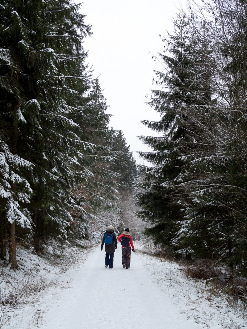 Germany Hochwald Eifel Travel Winter Hunsruck Hochwald National Park