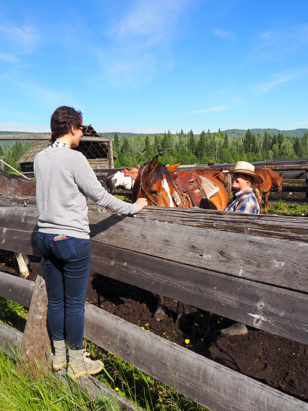 Canada, Wells Gray, British Columbia, Travel, Road Trip, Horseback riding