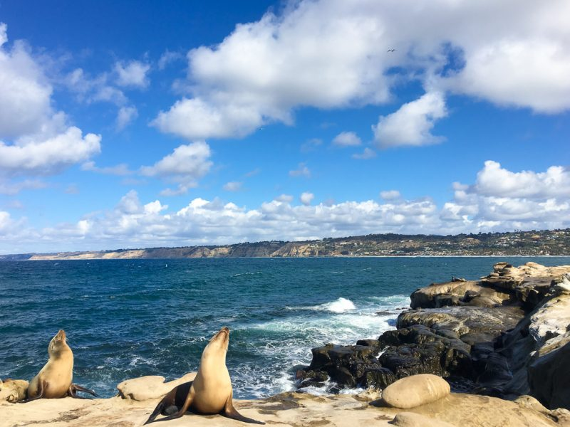 Travel San Diego California USA La Jolla